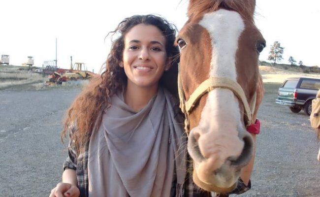 guest_horse_1