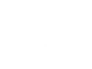 TripAdvisor 2017 Award of Excellence